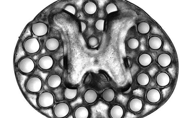 Rapid 3D Printing Technique Yields New Spinal Cord Treatment